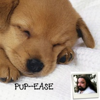 Pup-Ease